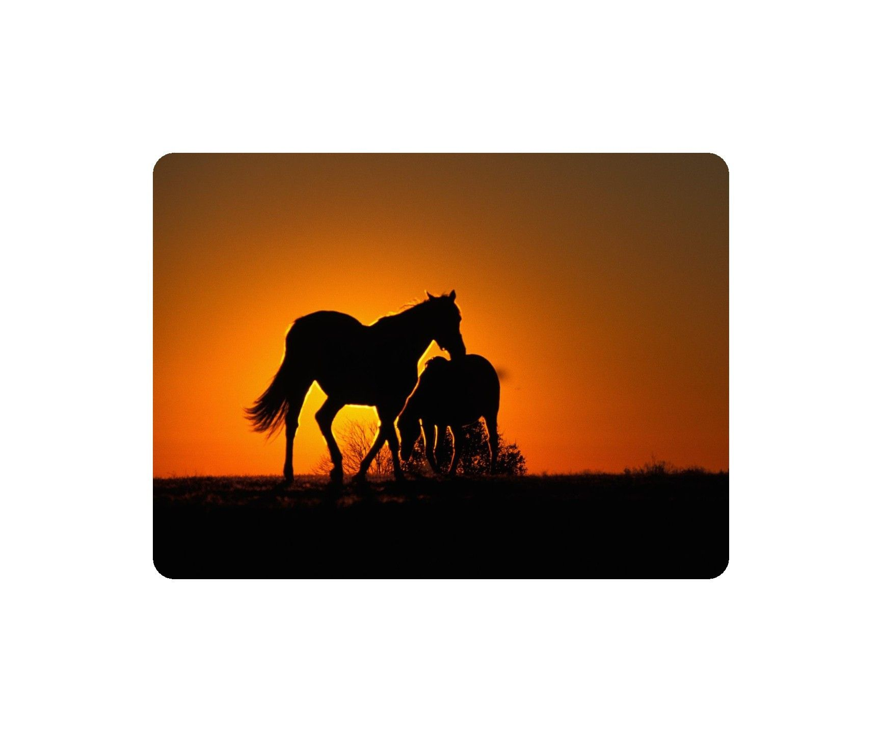 1731x1437 Beautiful Animal Mouse Pad Wild Horses Sunset Mice, Sunset