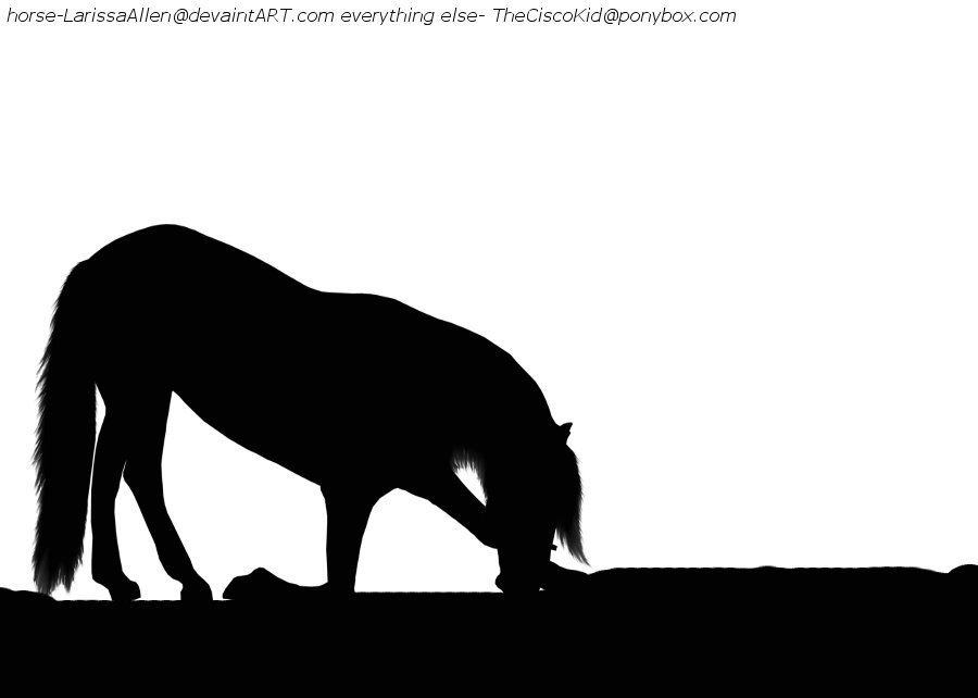 900x642 Bowing Horse Silhouette By