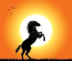 236x201 Hor 01 Rk0406 23 Kimball Stock Silhouette Of Quarter Horse