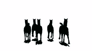 320x180 Herd Of Running Horses Comes Nearer And Keeps Away, Black