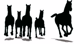 320x180 Run Of Herd Of Horses, The Front View, Black Silhouette On White