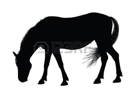 450x328 Horse Silhouette Detailed Horse Silhouettes Collection Vector