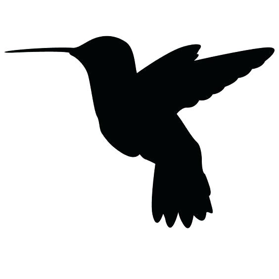 564x564 Hummingbird Outline Beautiful Hummingbird Small Bird Outline