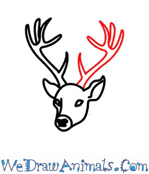 300x350 Deer 06.png