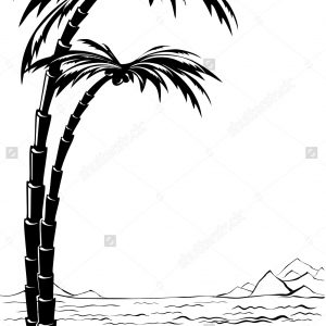 300x300 Adult Palm Trees Drawing Palm Tree Drawing Outline. Palm Tree