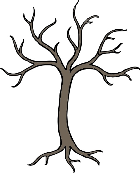 480x595 Leafless Tree Drawing Bare Tree Silhouette Stock Images Royalty