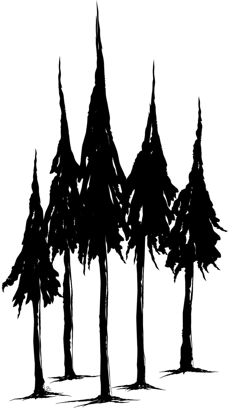 736x1316 Simple Pine Tree Drawing Best Ideas About Pine Tree Silhouette