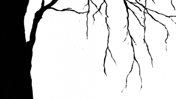 570x320 Creepy Tree Drawing Creepy Tree Silhouette Clipartsco