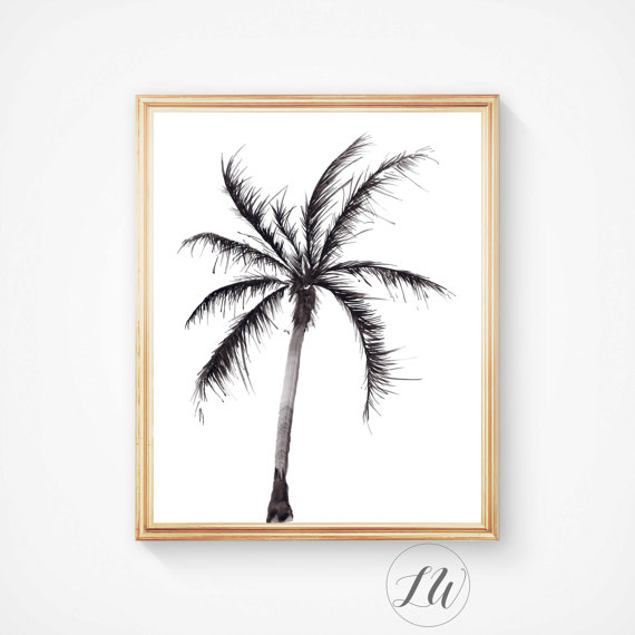 570x570 Watercolour Palm Tree. This Is Not A Silhouette, It Is A Painting