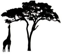 210x183 African Trees Art Projects For Kids African Tree