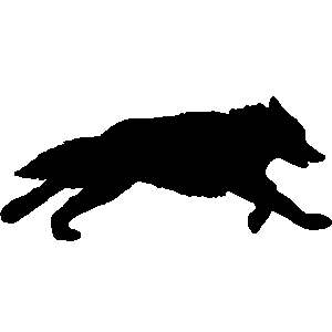 300x300 Wolf Clipart Coyote