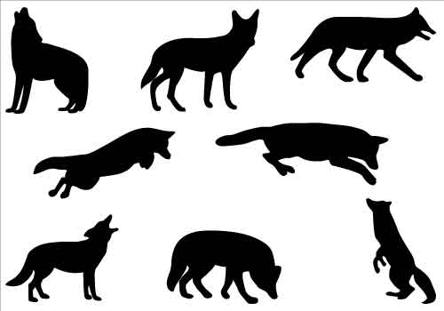 500x350 Howling Wolf Silhouette Psd