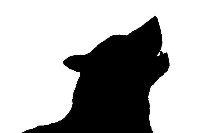 900x542 Howling Wolf. By Animefreakmangafreak