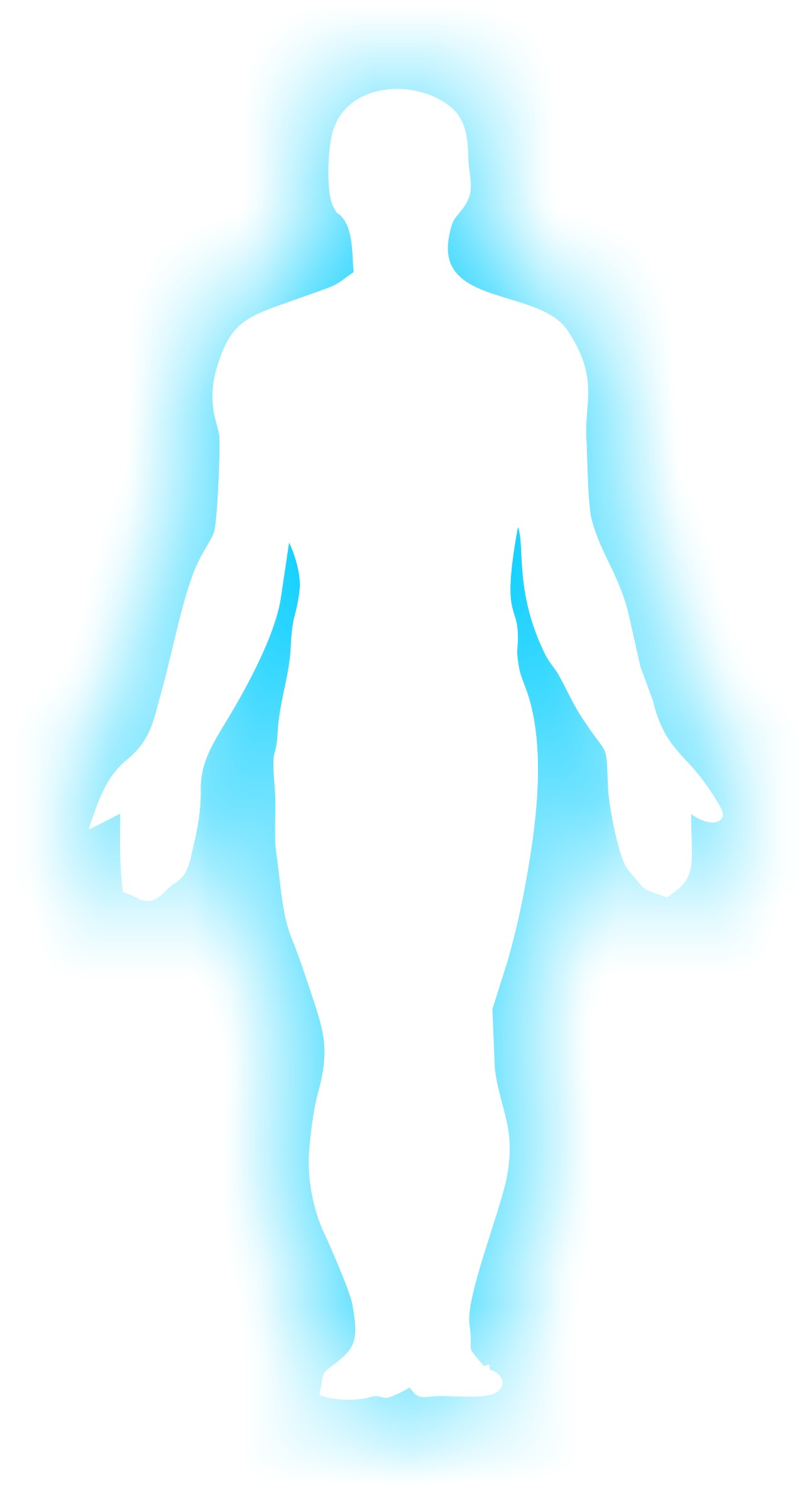1292x2368 Awesome Human Body Silhouette Human Body Part In Detail