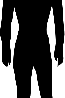 210x315 Human Body Silhouette Medical