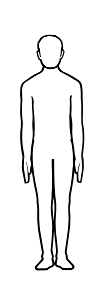 210x589 Human Body Outline Clipart