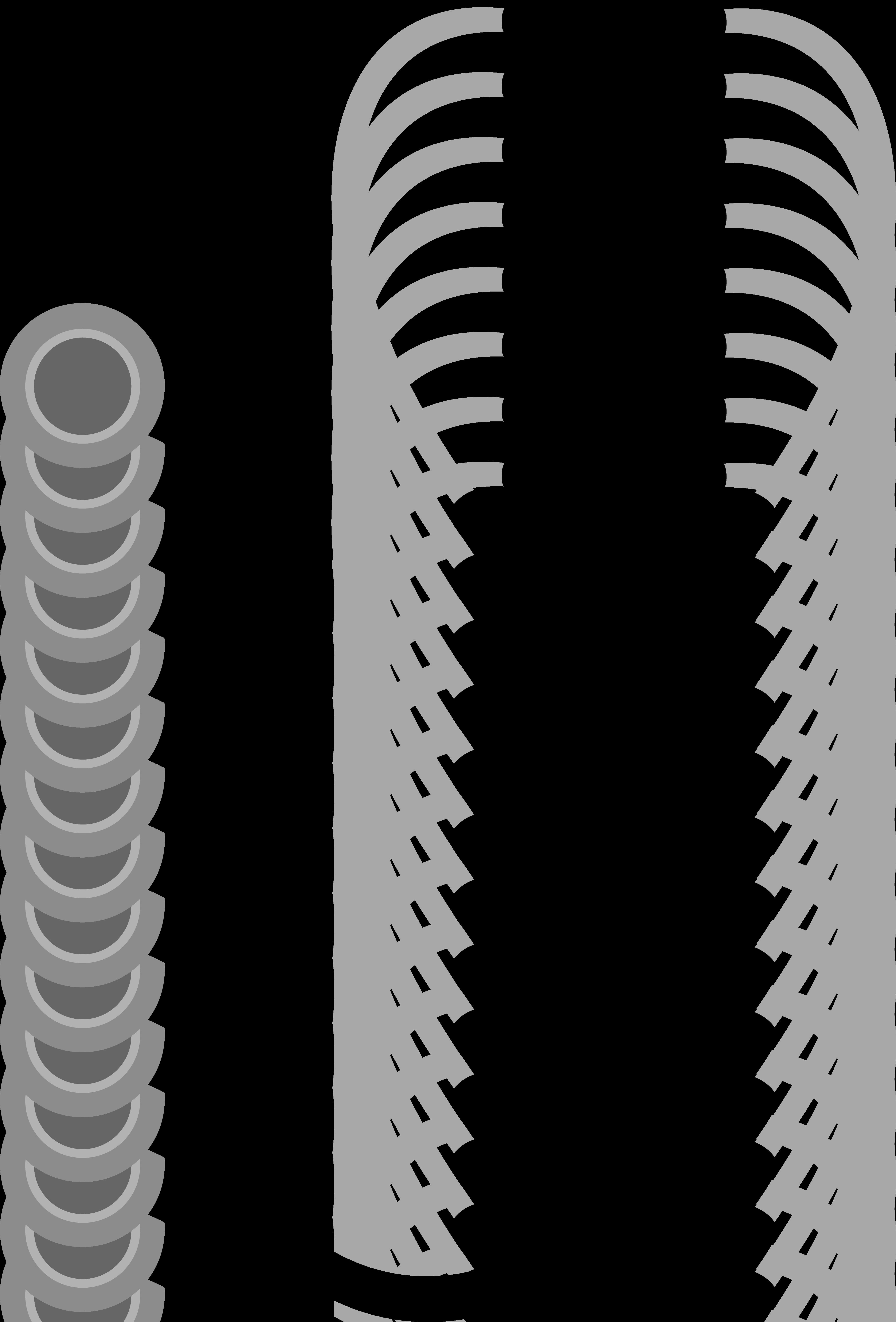 4251x6271 Human Body Silhouette Clipart