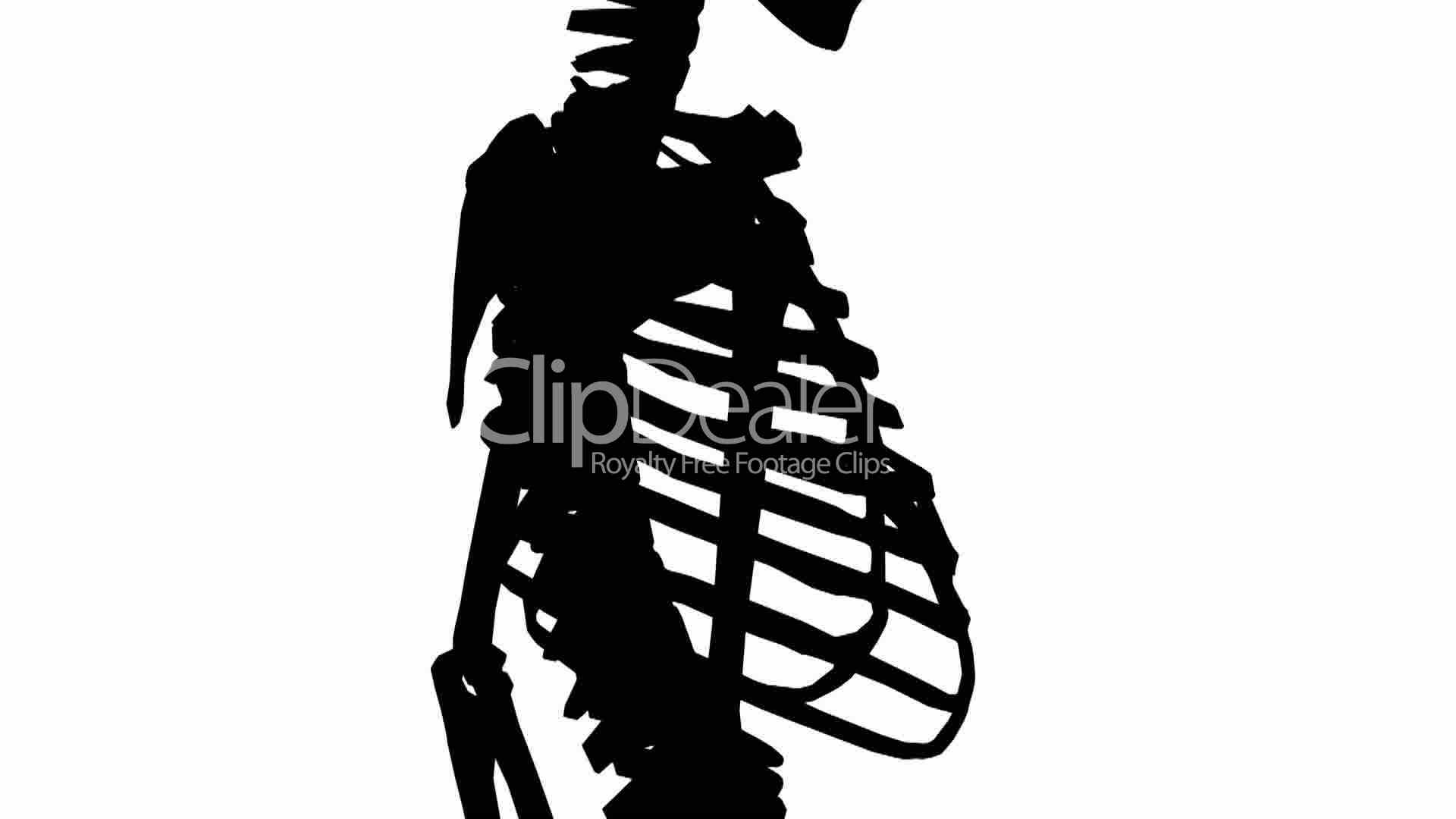 1920x1080 Rotation Of 3d Skeleton.ribs,chest,anatomy,human,medical,body