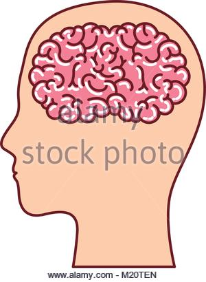 300x410 Human Face Brown Silhouette With Brain Inside In Dark Red Contour
