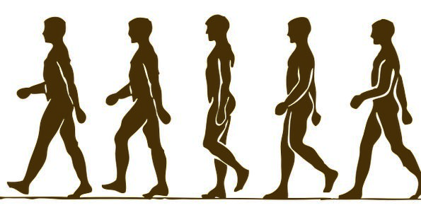 595x304 Man, Gentleman, Humanoid, Silhouette, Outline, Human, Walking
