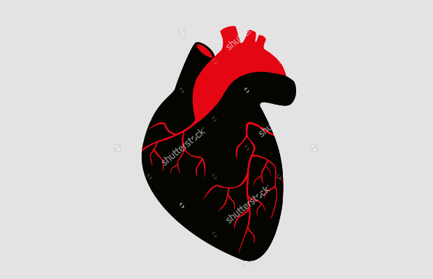 Human Heart Silhouette
