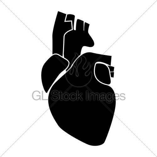 500x500 Human Heart Black Color Icon Gl Stock Images