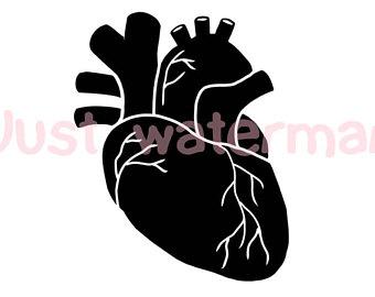 340x270 Human Heart Svg Etsy