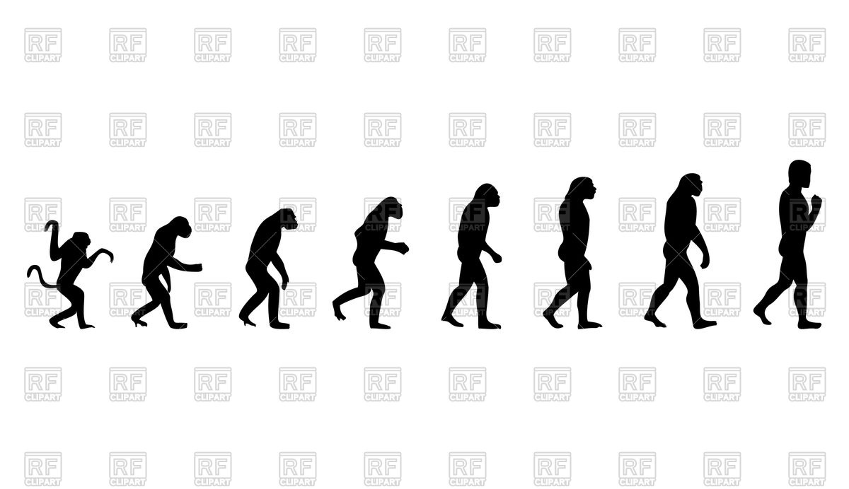 1200x692 Evolution From Monkey To Human Royalty Free Vector Clip Art Image