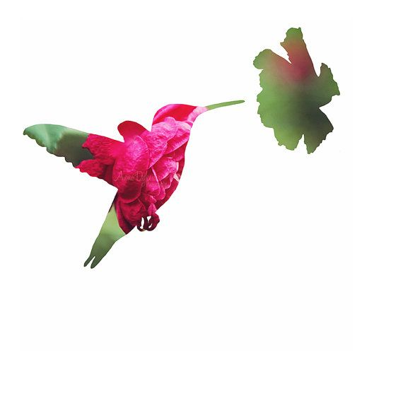 570x570 Spring Hummingbird Floral Silhouette Photograph By Annadykema