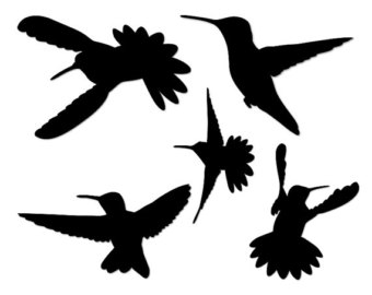 340x270 Mockingbird Clipart Hummingbird