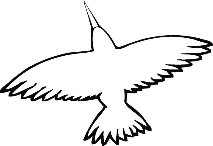700x480 Hummingbird Outline