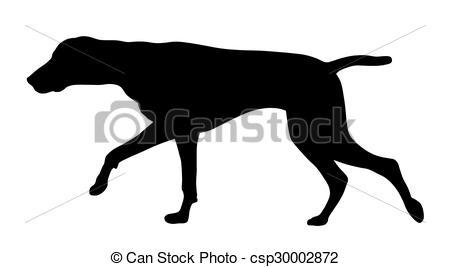 450x267 Hunting Dog. Vector Illustration Of German Short Hair Vectors