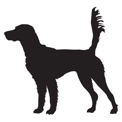 400x400 English Setter On Scent Hunting Dog Decal