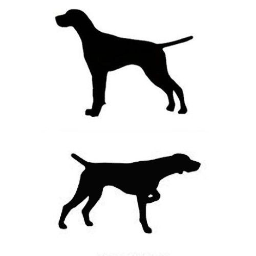 500x500 German Shorthaired Pointer Clipart
