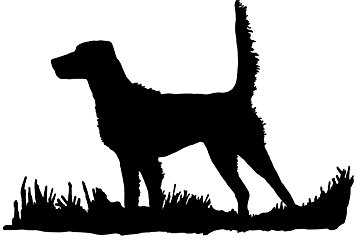 355x240 English Setter Silhouette (High Tail), Bird Dog