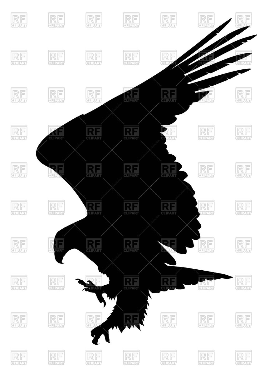 846x1200 Silhouette Of Hunting Eagle Royalty Free Vector Clip Art Image