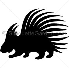236x234 Canadian Maple Leaf Silhouette Clip Art. Download Free Versions