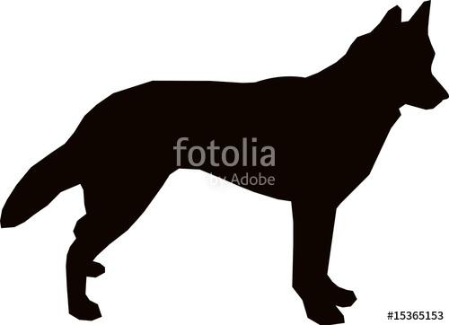 500x362 Alaskan Husky Dog Stock Image And Royalty Free Vector Files