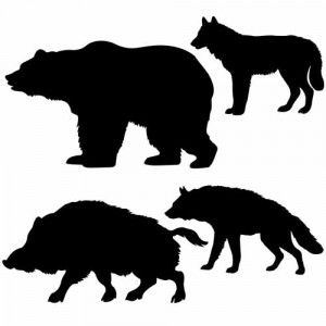300x300 Vector Silhouettes Of The Wild Boar, Bear, Wolf, Hyena On White