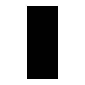300x300 Patineuse