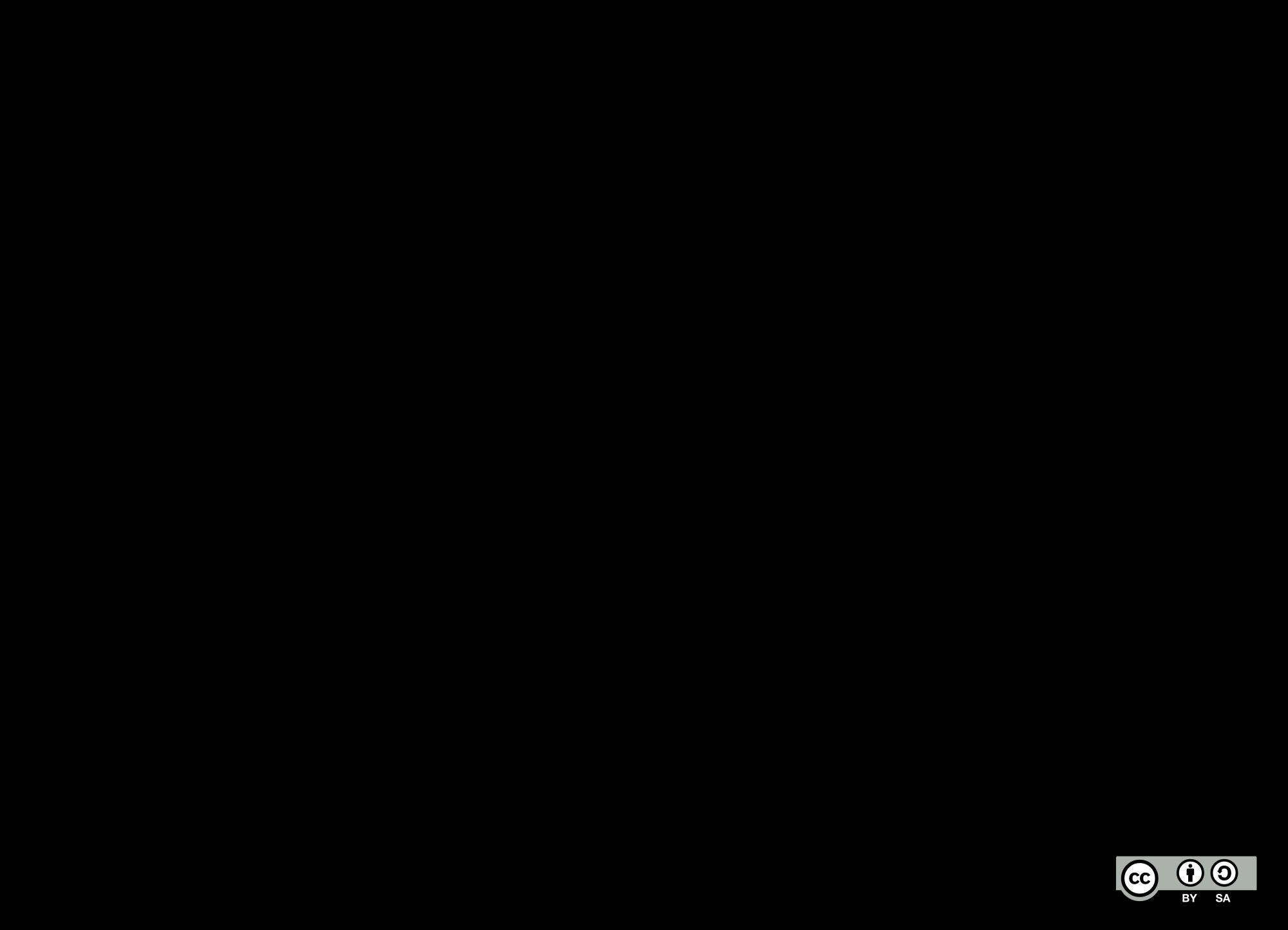 Icelandic Horse Silhouette