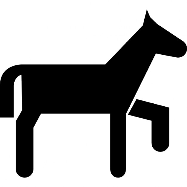 626x626 Pony Variant Cartoon Silhouette Icons Free Download