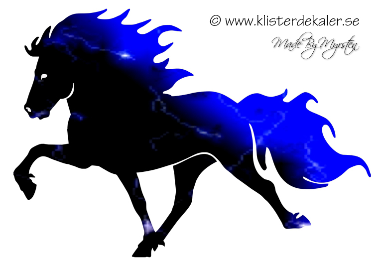 765x530 Single Icelandic Horse Midnight