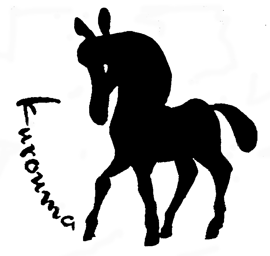 881x833 The Ttab Reverses 2(D) Refusal Of Dark Horse