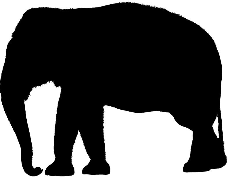 800x624 Indian Elephant Silhouette Images Pictures