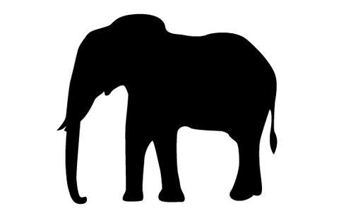 480x309 Elephant Silhouette Vector Silhouettes Vector
