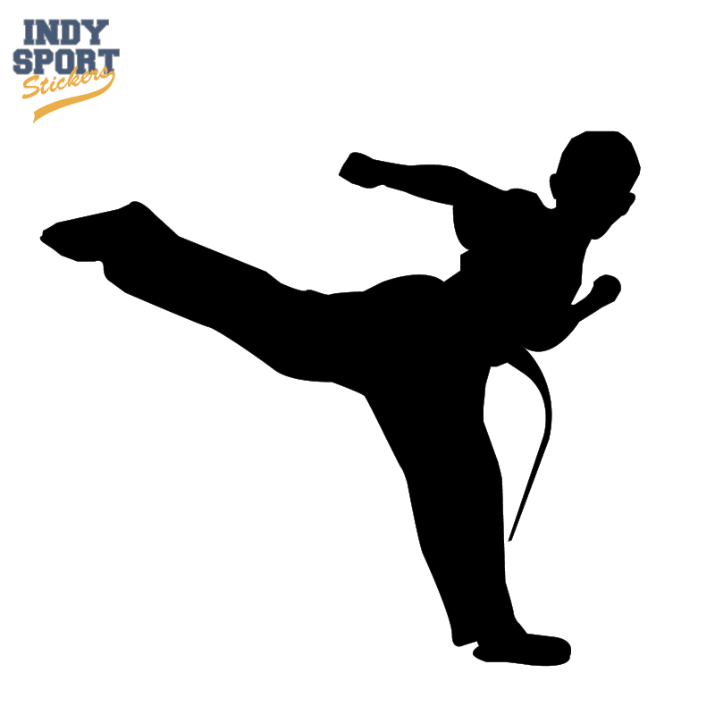 800x800 Martial Arts Karate Male Boy Kicking Silhouette