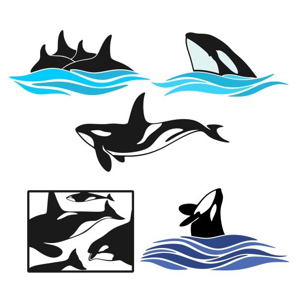 600x600 Orcas Pack Cuttable Design Cut File. Vector, Clipart, Digital