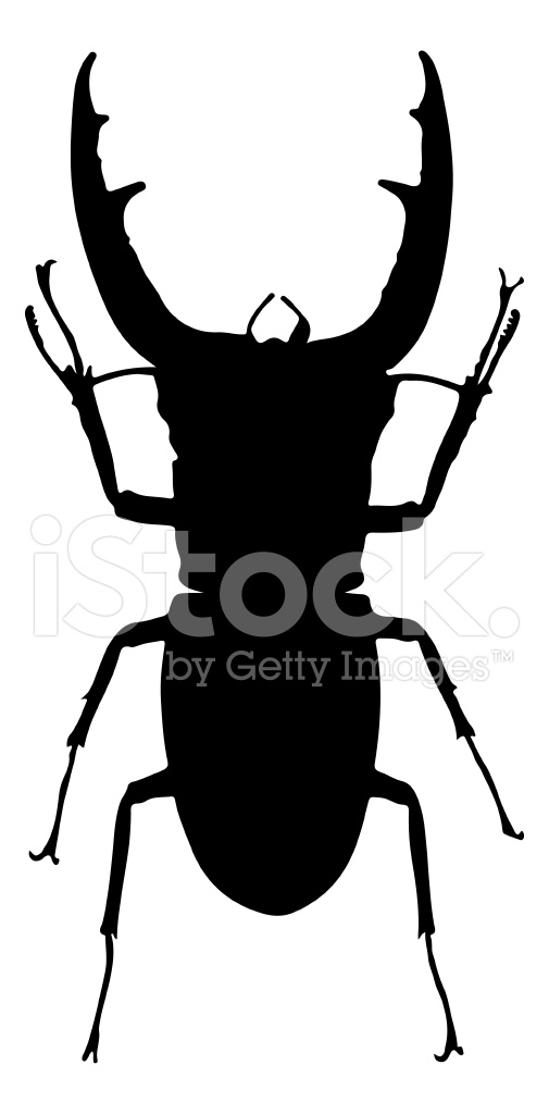 505x1024 Insect Silhouette Stock Vector