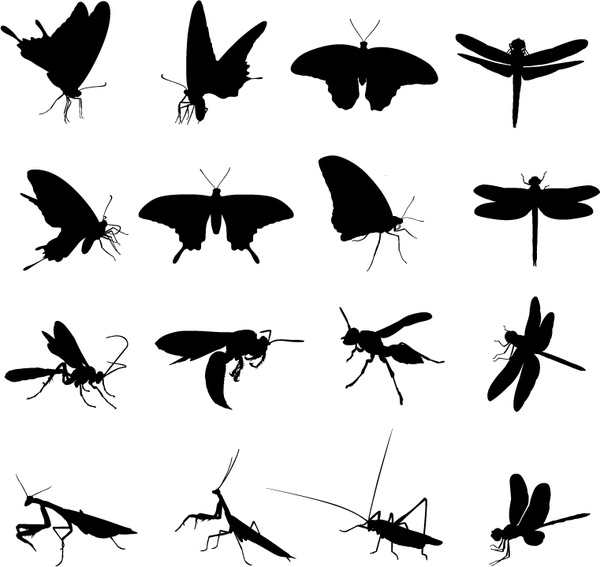 600x567 Insect Silhouette Free Vector Download (5,969 Free Vector)
